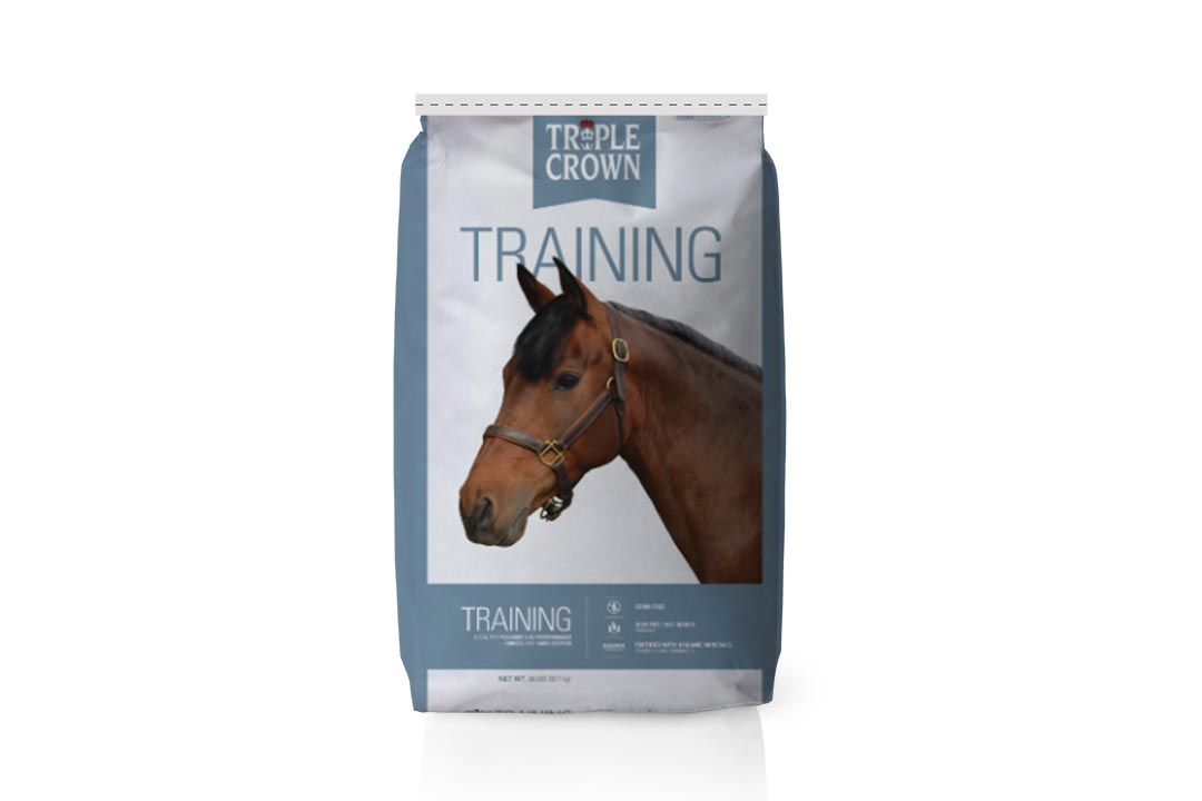 08.triplecrown_training