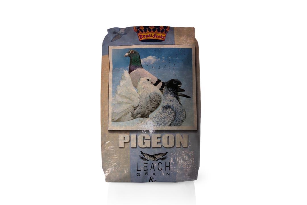 104.leach_pigeon
