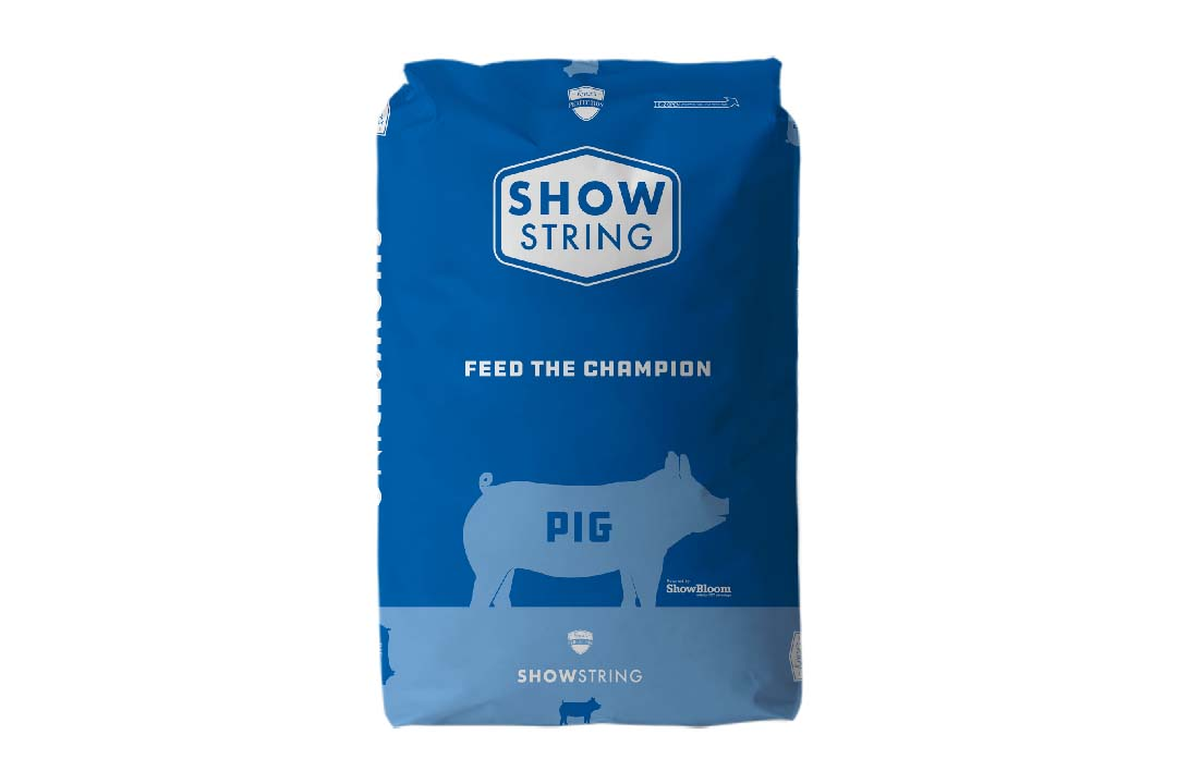 69.showstring_pig